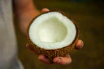 """We were able to incorporate fresh coconut, papaya, lime, and fish into most of the meals we prepared."" Kelly Ledford"