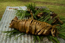 """""""Whole pigs wrapped in banana leaves and piles of dalo were roasted in earth ovens or lovos."""" Kelly Ledford, 2013 Fellow"""