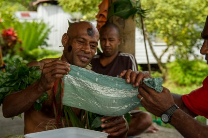 """""""What better way to get to know someone than by sitting in a circle as you pass the same kava cup around to drink from? It's an amazing experience!"""" Jozie Banas, 2014 Fellow"""