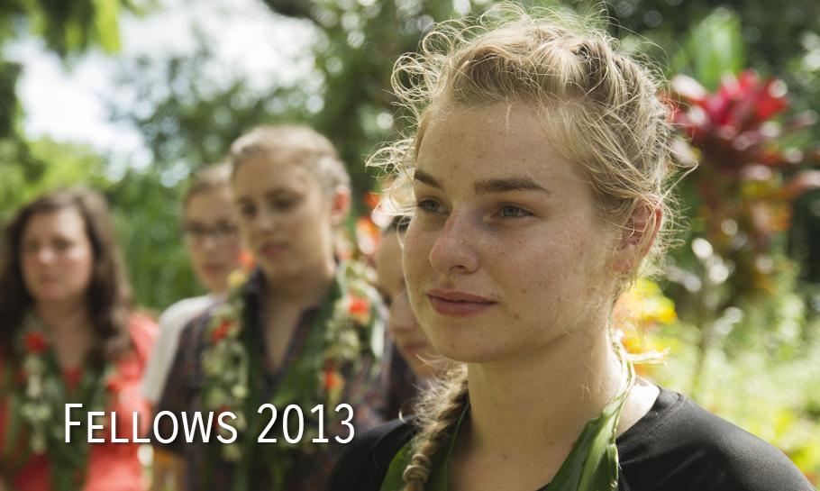 Fellows 2013 Cover